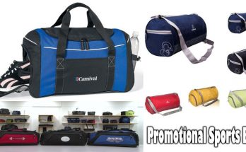 Promotional Sports Bag and It's Remarkable Game Program